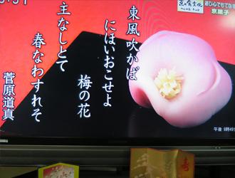 テレビ放映の様子7
