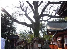 武信稲荷神社